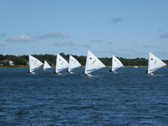 regatta photo